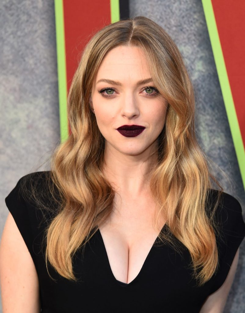 Amanda Seyfried Boobs Photos