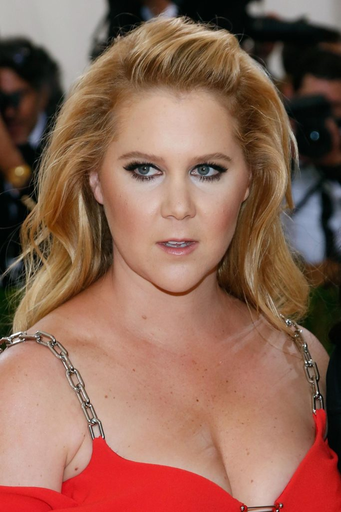 Amy Schumer Boobs Photos