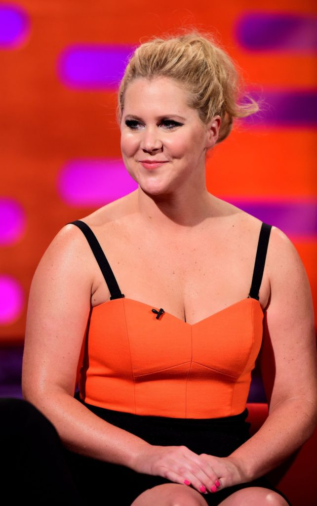 Amy Schumer Topless Wallpaper