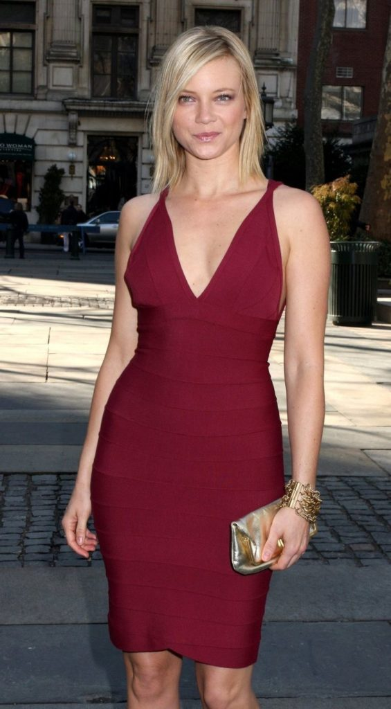 Amy Smart Legs Images