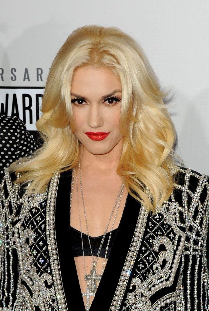 Gwen Stefani Bra Image