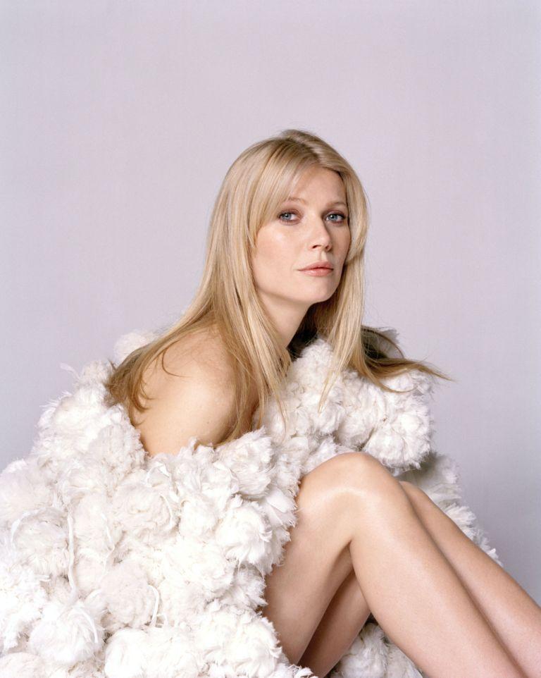 Gwyneth Paltrow Lingerie Pics