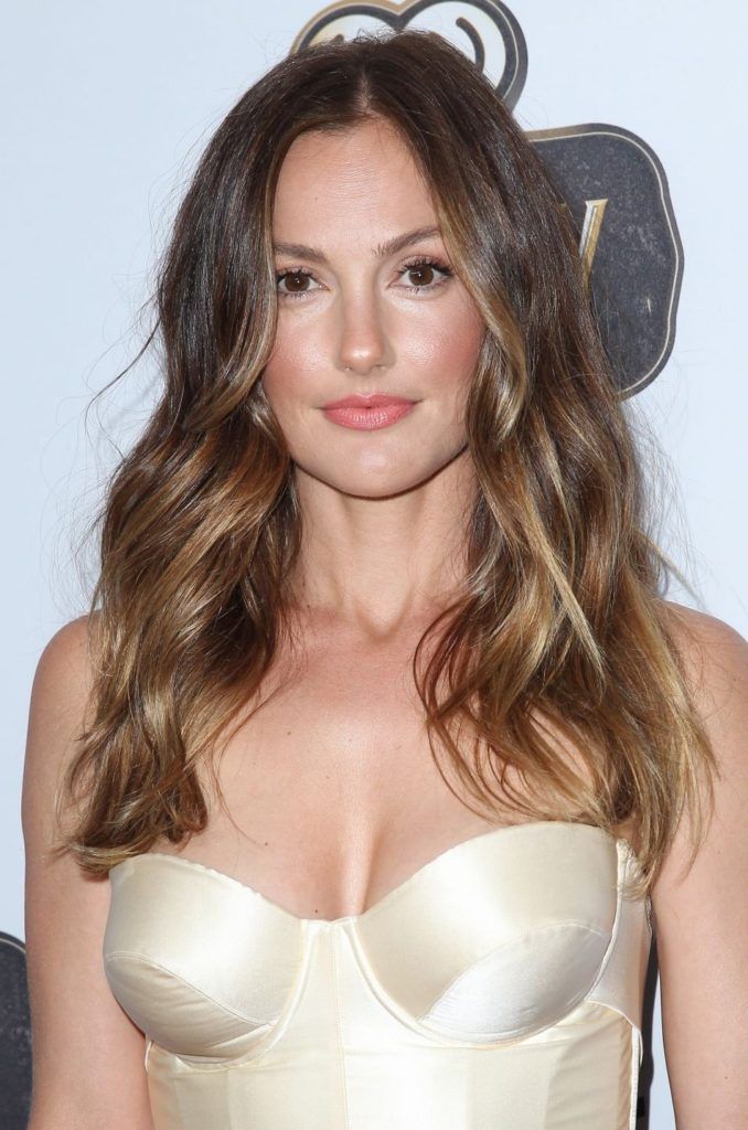 Minka Kelly Hot Boobs Pics