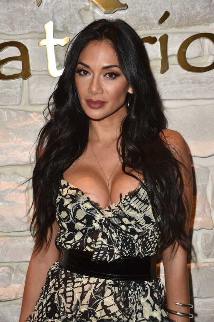 Nicole Scherzinger Hot Boobs Images