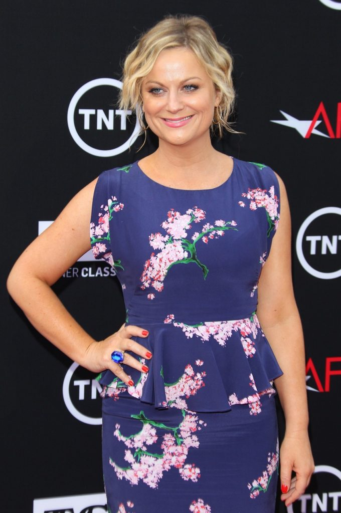 Amy Poehler Oops Moment Pics