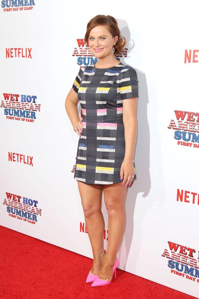Amy Poehler Sexy Look Pics