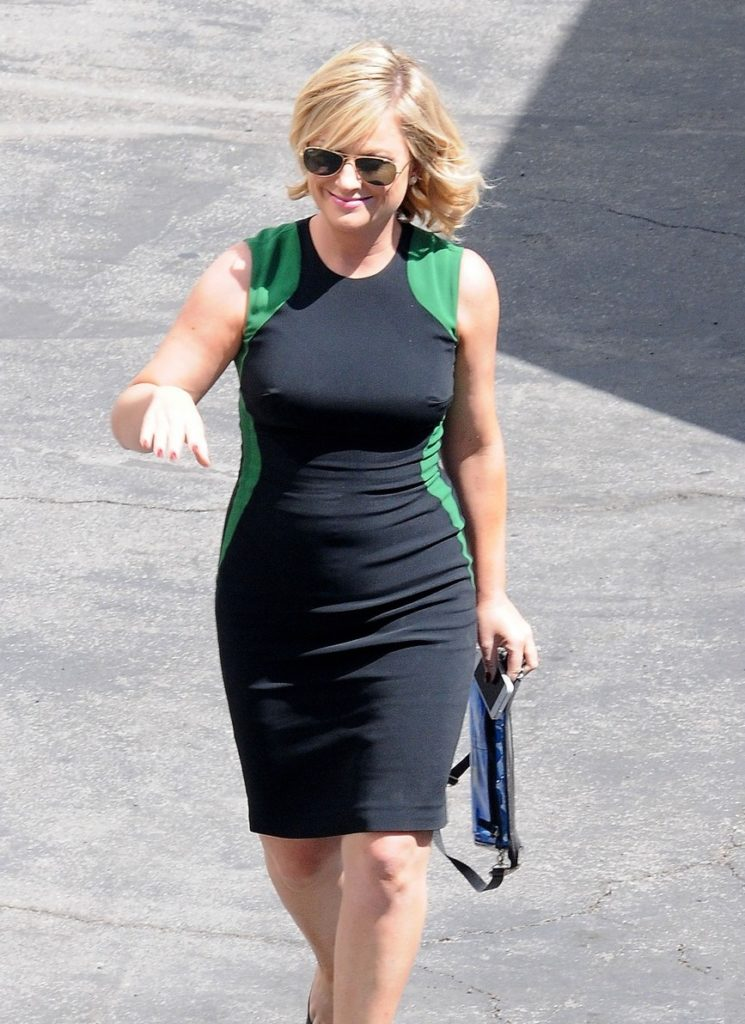 42 Hottest Amy Poehler Sexy Bikini Pictures You Will love ...