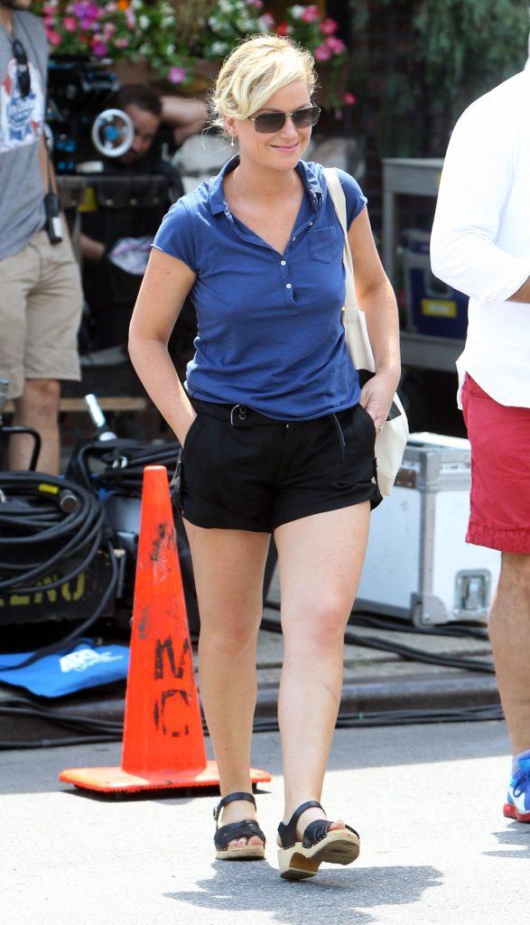 Amy Poehler Undergarments Pics