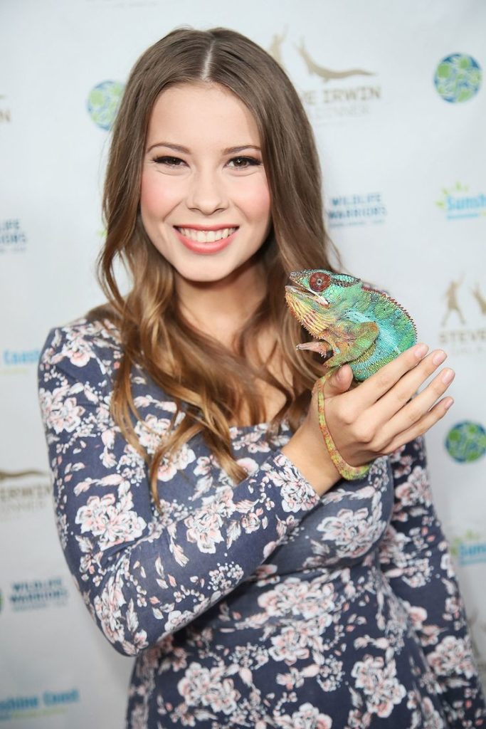 Bindi Irwin Sexy Eyes Wallpapers
