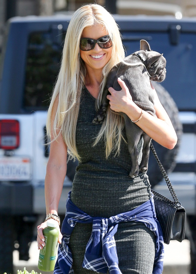 Christina El Moussa Body Images