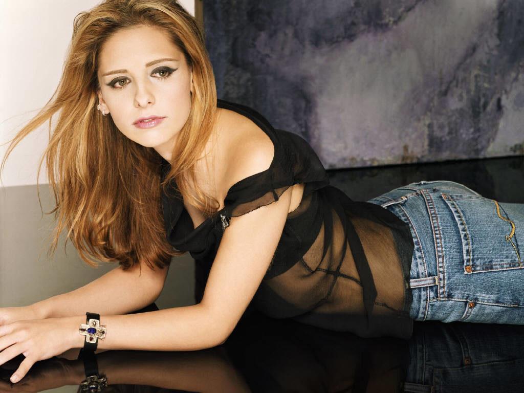 Sarah Michelle Gellar In Net Clothes Pics