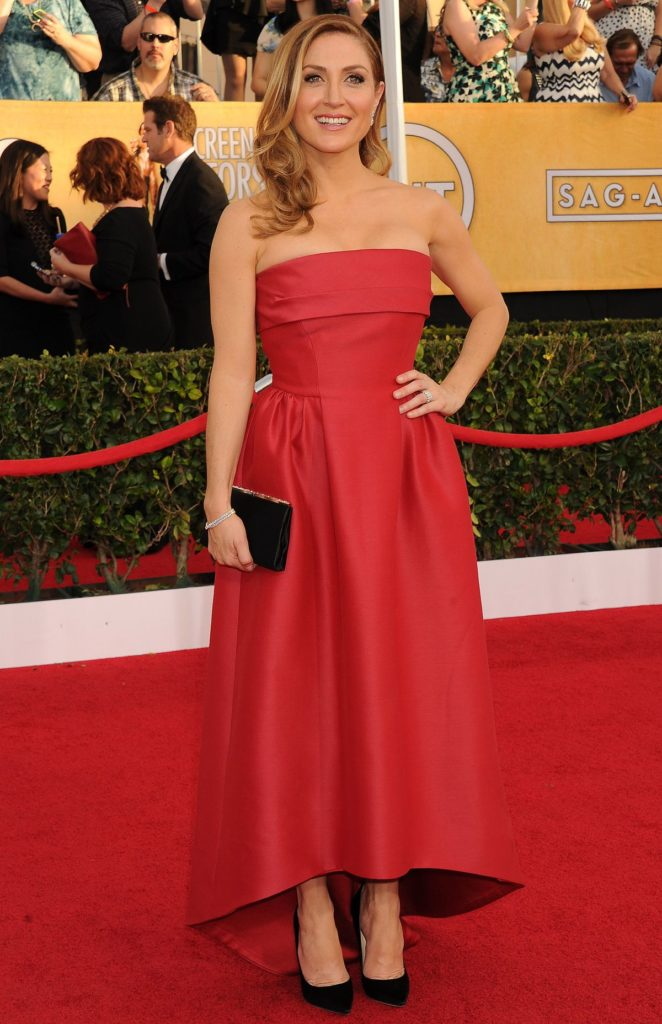 Sasha Alexander In Red Gown Pics