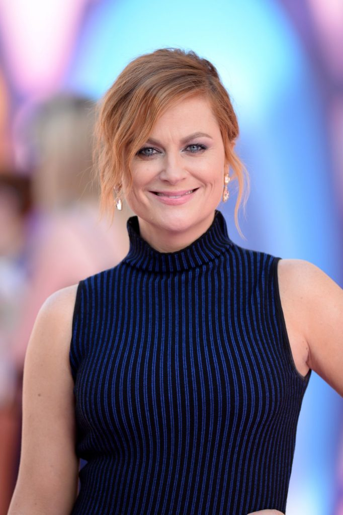 Sexiest Amy Poehler Pictures